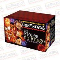 FLORES DE FUEGO-184